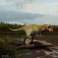 Hóa thạch tiết lộ tổ tiên của