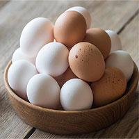 Hỏi khó: Những chú gà con ở trong quả trứng kín mít làm sao thở được nhỉ?