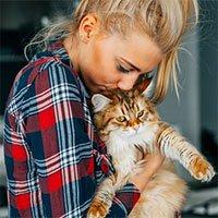 Hội yêu mèo nhưng lại bị dị ứng đã có cứu tinh mang tên Hypocat