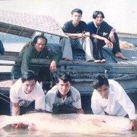 Huyền thoại về cá Sủ Vàng trên sông Lam