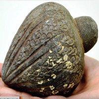 Israel tìm lại được quả lựu đạn lạ thường 700 năm tuổi