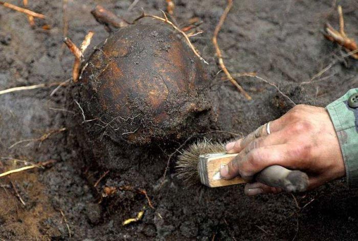 Khai quật 350 bộ xương của binh sĩ thời Napoleon