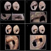 Khai quật được trang sức có niên đại cổ nhất thế giới