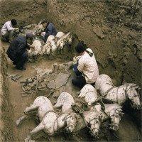 Khai quật lăng mộ Tần Thủy Hoàng, phát hiện cả thế giới động vật ở bên trong
