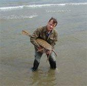 Khám phá mới về bò cạp biển