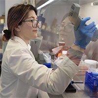 Kháng thể Regeneron ngăn lây nhiễm nCoV đến 50%
