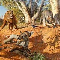 Khí hậu cực đoan làm tuyệt chủng hệ động vật khổng lồ ở Úc và New Guinea