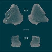 Kho báu hắc diện thạch 9.000 năm