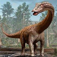 Kho báu rùng mình: Dàn siêu quái thú 155 triệu tuổi bụng đầy đá quý