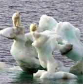 Khối lượng băng ở Bắc cực xuống mức thấp kỷ lục