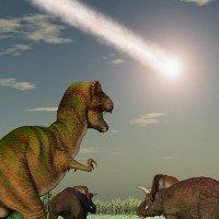 Không có thảm hoạ thiên thạch, khủng long vẫn tuyệt chủng