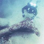 Khu dân cư 11.000 năm tuổi dưới biển Baltic