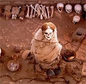 Kinh dị nghĩa địa xác ướp cười ngoác miệng