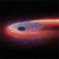 Kinh hãi ngôi sao hình... sợi mì, quấn chặt lỗ đen
