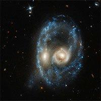 Kính viễn vọng Hubble phát hiện ra