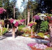 Kỳ lạ vườn cây lộn ngược ở Mỹ