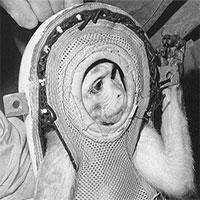 Kỳ thú chuyện con khỉ bay lên vũ trụ, ngày trở về, nó còn làm loạn cả một khu trục hạm của Mỹ