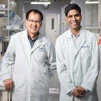 Kỹ thuật tái tạo xương từ tế bào tủy và vật liệu carbon