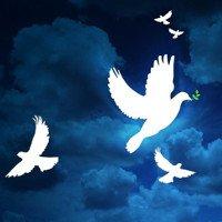 Lịch sử ngày Quốc tế Hòa bình thế giới 21/9