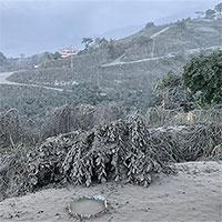 Liên Hợp Quốc cảnh báo về ảnh hưởng từ hoạt động phun trào của núi lửa La Soufriere