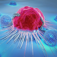 Liệu chúng ta có thể giết chết tế bào ung thư khi chúng đang