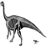 Loài khủng long kỳ lạ biết bò trước khi biết đi giống như con người