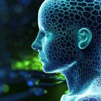 Loài người có thể chỉ tồn tại đến năm 2100?