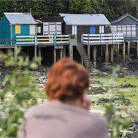 Loài tảo biển giết người trong tích tắc xuất hiện tại 6 bãi biển nước Pháp