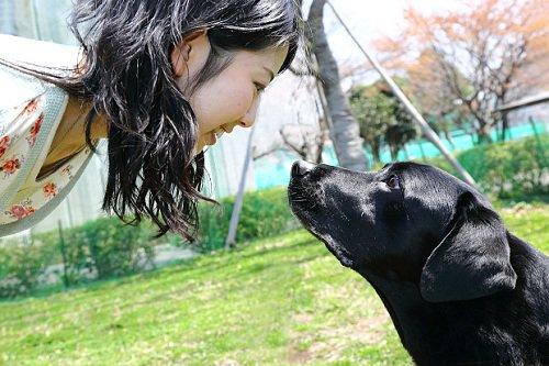 Lời giải cho tình cảm giữa con người và vật nuôi