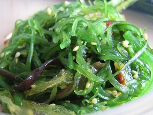 Lợi ích chữa bệnh của tảo biển