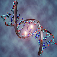 Lý giải được tại sao CRISPR/Cas9 chưa thu được hiệu quả ở người