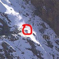 Mải vồ cừu, báo tuyết rơi từ vách đá cao 100 mét