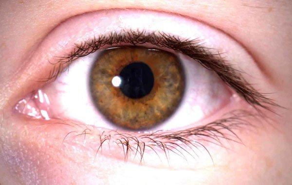 Mắt người nhìn được bao xa?