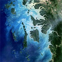 Màu xanh sâu thẳm của nước biển là biểu hiện của sự chết chóc