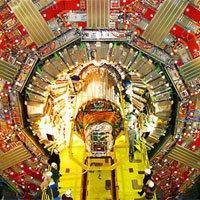 Máy gia tốc hạt lớn đột ngột dừng hoạt động do chồn cắn đứt dây điện