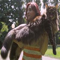 Mèo dài nhất thế giới