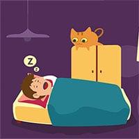 Mẹo ngủ chung với mèo để được ngon giấc