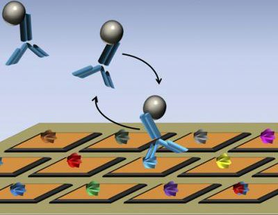 Microchip cảm biến sinh học mới thúc đẩy phát triển thuốc điều trị