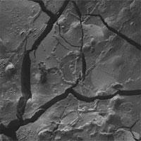 Mô não thủy tinh của nạn nhân vụ phun trào núi lửa cổ đại
