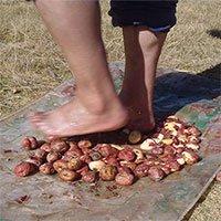 Món ăn nhìn như cục đá, muốn thưởng thức phải dùng chân giẫm đạp