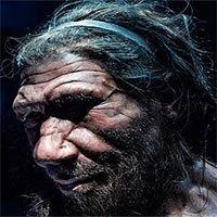 Một loài người khác tuyệt chủng vì