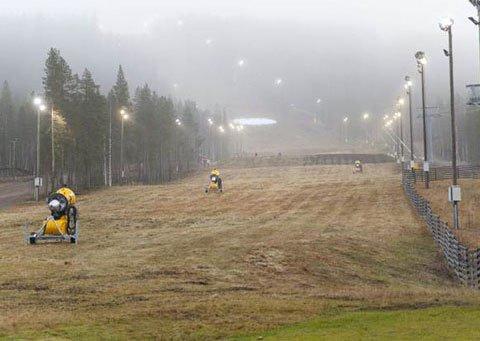 Mùa đông ấm bất thường ở Bắc Âu