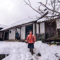 Mùa đông sẽ biến mất ở miền Bắc sau vài năm nữa