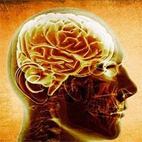 Mỹ tìm ra thuốc đánh bại bệnh Alzheimer