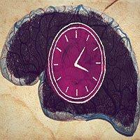 Não nhận biết thời gian như thế nào khi không có ánh sáng và đồng hồ?