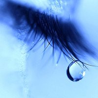 Nếu nghĩ nước mắt chỉ có 1 loại thì bạn đã nhầm rồi, có tận 3 loại cơ