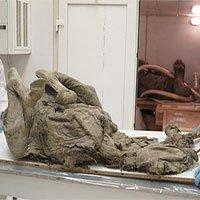 Nga nghiên cứu xác ngựa 4.500 tuổi từ băng vĩnh cửu