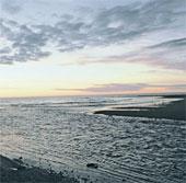 Nga phát hiện sự sống mới dưới lòng biển Viễn Đông