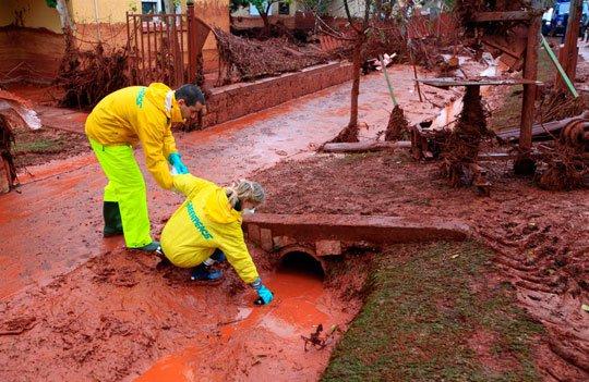 Nghiên cứu xử lý bùn đỏ bô xít thành đất trồng