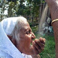 Ngỡ ngàng cụ bà gần 80 tuổi nghiện ăn cát sỏi trong suốt 18 năm